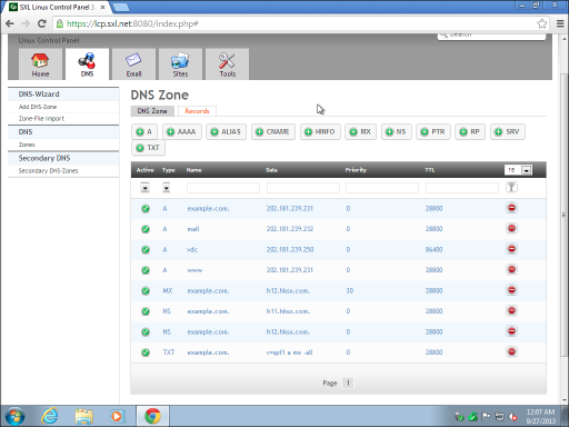 008 DNS Records management
